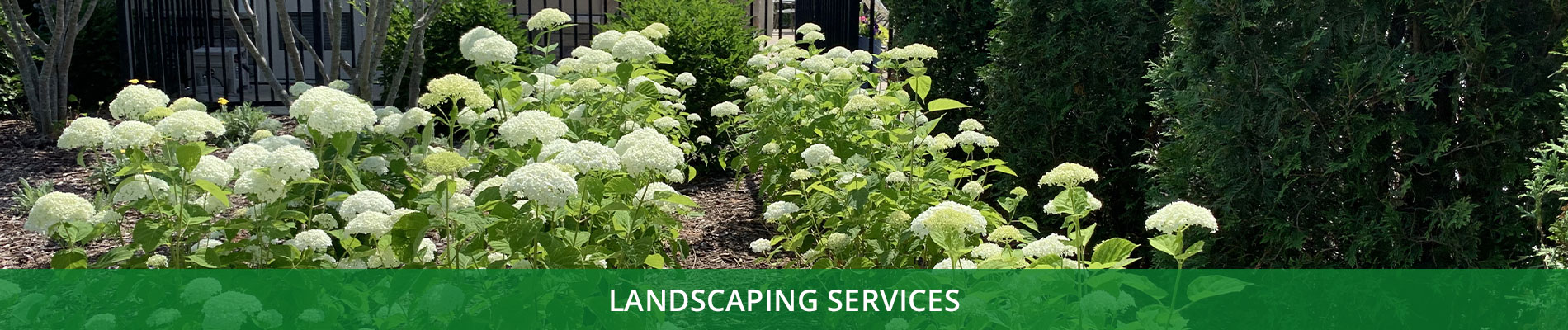 CB-Services-Banners-Landscaping.jpg