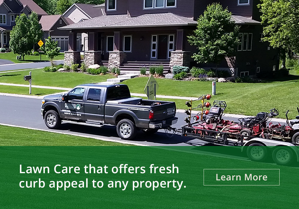 CB Services | lawn, landscaping, irrigation, snow removal